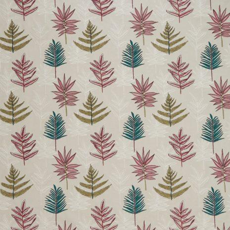 seychelles begonia