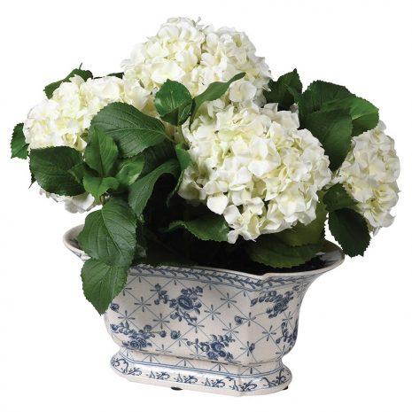 white hydrangea in a delft style pot